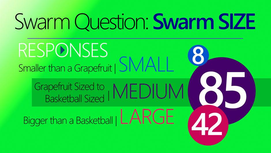 Swarm-Size