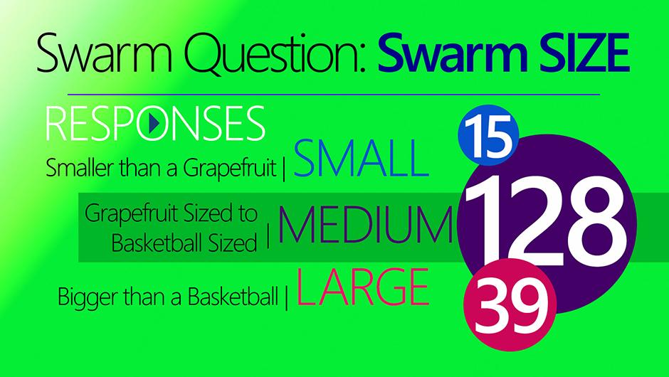 Swarm-Size-4